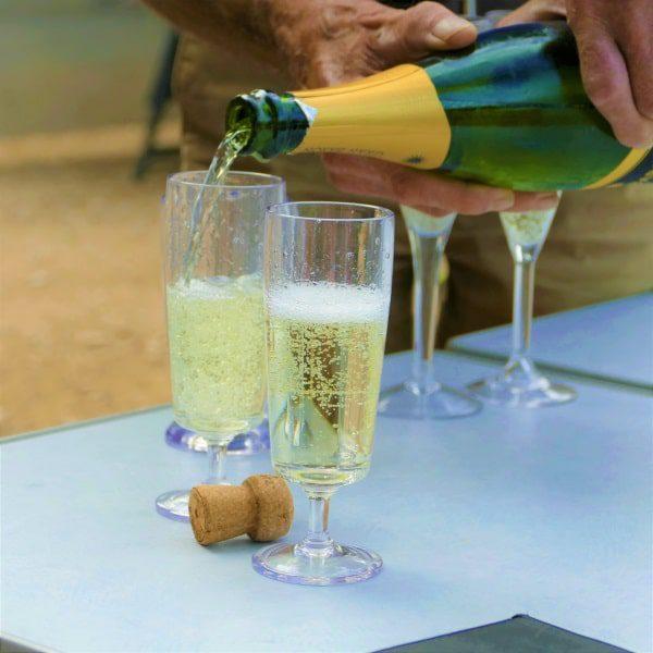 champagneglazen capri 2 stuks